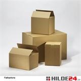 Faltkartons 310 x 230 x 250 mm | HILDE24 GmbH